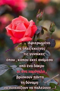Great Words, Wise Words, Silly Quotes, Dreams Do Come True, Greek Quotes, My Memory, Of My Life, Slogan, Psychology