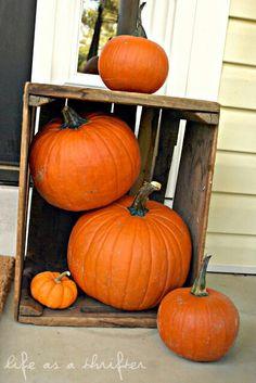 Pumpkins in a crate. Fall decor ideas.