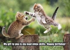 THIS IS FOR YOU @Natalie Castanon  HAPPY BIRTHDAY!!!!