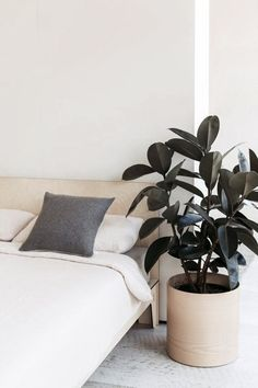 The Five Most Important Tips for Minimalist Interior Design - Minimalist Home Decor - Minimalist Home Decor, Minimalist Interior, Minimalist Living, Minimal Bedroom, Modern Bedroom, Eclectic Bedrooms, Master Bedrooms, Eclectic Design, Eclectic Decor