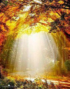Você faz a Diferença: Luz é o que hoje eu te desejo...