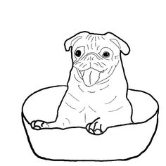How to draw a pug | Art | Pinterest | Pug puppies and Drawings