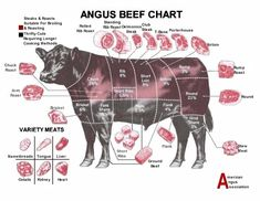 Angus Beef Chart Showing Brisket