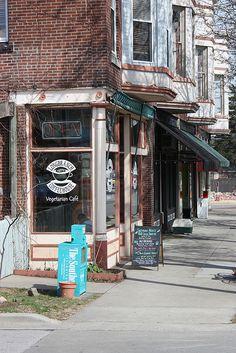 "Inspiration for my novel ""Promise"": Carbondale, Illinois (Festuca Longifolia)."