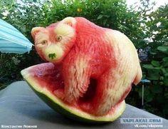 vattenmelonbjörn