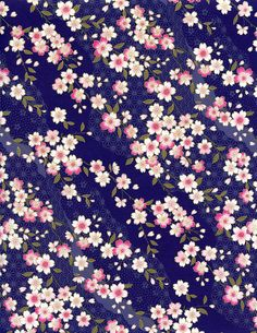 Cherry blossoms on navy background