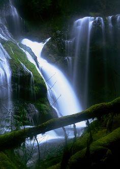 Panther Creek Falls, Washington