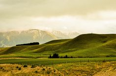 Fields of NZ. #Hobbit #Middle-earth