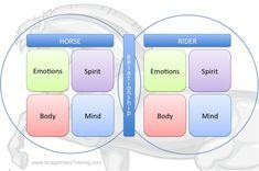 Areas of straightness training