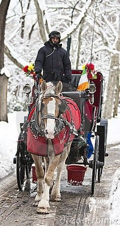 Winter Carriage Ride in Central Park, New York City.   #MostBeautifulPages