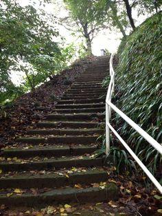 北條義時夫妻の墓に通じる階段
