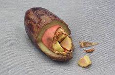 Safou fruit