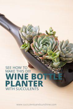 DIY Wine Bottle Planter for Succulents