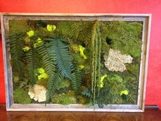 My low cost version of the Vivaterra moss and fern wall art - less than two hundred dollars. Moss Art, Ferns, Wall Art, Projects, Log Projects, Blue Prints, Wall Decor