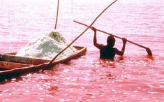 I have never had a desire to go to Africa, but now I find out there's a pink lake in Senegal?! That sparkles?! This is now on my list! (They seriously should have mentioned this in Mean Girls...)