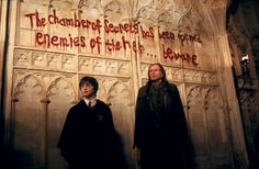 """Harry in the """"Chamber of Secrets,"""" HP2.."""