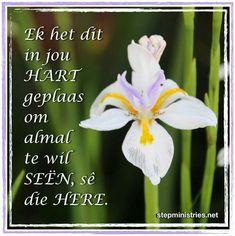 Afrikaans, Kos, Inspirational Quotes, Animals, Life Coach Quotes, Animales, Animaux, Inspiring Quotes, Animal