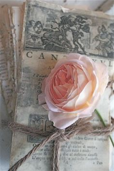 Old pages with pink flower (can't tell if it's peony or an old English rose).