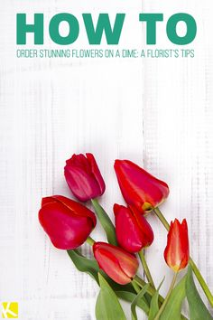Order Stunning Flowers on a Dime: A Florist's Tips Wedding Planning Tips, Wedding Tips, Wedding Stuff, Love Parents, A Dime, Simple Weddings, Frugal Living, Money Saving Tips, Good To Know