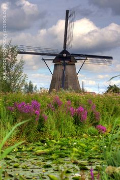 Windmill ~ Photography by Francesco Riccardo Iacomino