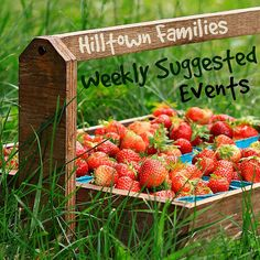 Hilltown Families comprehensive list of Weekly Suggested Events is up at www.HilltownFamilies.org. Covering the four counties of western MA, find educational and engaging activities happening across the region this weekend and all next week! Then make plans to get out with your family and engage in your community!