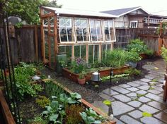 One of my dreams is to put a low greenhouse like cold frame using beautiful old windows - under my windows along the south side of my house for winter. run on sentence. Window Greenhouse, Greenhouse Shed, Greenhouse Gardening, Small Greenhouse, Greenhouse Wedding, Portable Greenhouse, Outdoor Projects, Garden Projects, Garden Structures
