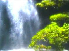 Stress Management & Relaxation - Dream - Waterfalls - Rainforest Music E...