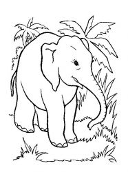 Free Elephant Coloring Pages from Animal Coloring Pages category. Printable coloring pictures for kids that you could print and color. Check out our collection and print out the coloring pictures for free. Elephant Colouring Pictures, Elephant Coloring Page, Baby Coloring Pages, Cartoon Coloring Pages, Mandala Coloring Pages, Animal Coloring Pages, Printable Coloring Pages, Coloring Pages For Kids, Coloring Books
