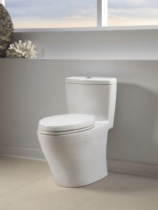 Ttoto Sada Compliant Aquia One Piece High Efficiency Toilet Features An Elongated