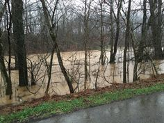 I was driving to post office today to make sure our GorgeousSoap.com clients get their holidays orders send out today and took this pictures. You can see I had a hard time to get there. #weather #flooding #flood #heavyrain #rainfall #storm #rainyday #christmas #holidays #storms
