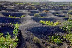 World's Beautiful Landscapes.: Unique Vineyards of Lanzarote, Spain