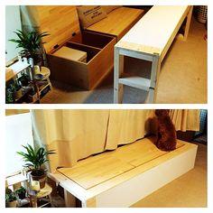 DIY初心者さんでもチャレンジしやすい、カラーボックスのリメイク。RoomClipユーザーさんも、いろいろなものにリメイクしています。その中で、収納を兼ねたベンチにしている実例をご紹介します。おもちゃ収納などにもぴったりの収納ベンチ、ぜひ作ってみてください。