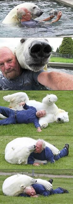 Oh my gosh. If I had had the chance to snuggle with a polar bear I think my life would be complete! THIS HAS TO BE ME!!!!