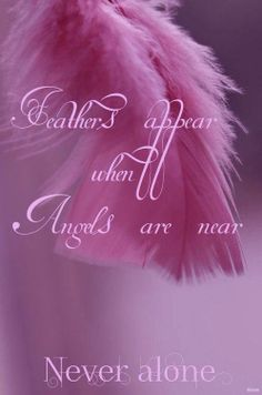Feathers appear when Angels are near - Never alone.