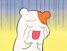 Cartoon Wall, Cartoon Icons, Hamster Kawaii, Super Meme, Wholesome Pictures, Hamtaro, Otaku, Cute Love Memes, Cartoon Profile Pictures