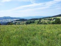 Auf dem Hügel vor Horben. Toller #Spot für #Modellflieger