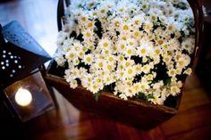 decoração casamento com mini margaridas - Pesquisa Google