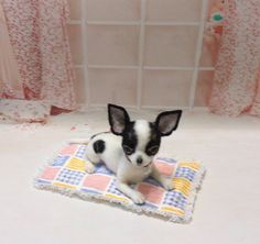 Needle felt Needle felted Chihuahua Handmade dog by FeltTale