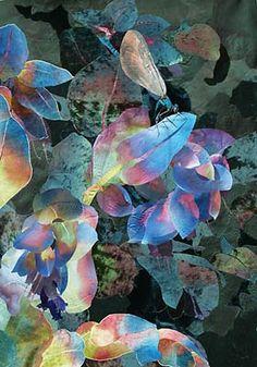 ~ Amanda Richardson - Beautiful Demoiselle on Cerinthe. textile collage