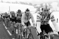 Sean Kelly, clearly not 'on the rivet'.