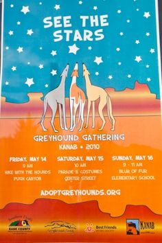 greyhound event poster