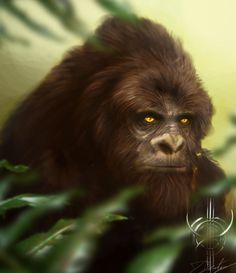 Having a strong fascination with anything cryptozoological and the desire to further explore animation I'v decided to create a Sasquatch, Yawie type . Myths & Monsters, Sea Monsters, Bigfoot Photos, Finding Bigfoot, Mysterious Universe, Bigfoot Sasquatch, Legends And Myths, Alien Concept, Aliens And Ufos