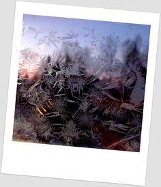 Portfolio Multimedeia 2: Jää tekee ikkunaan guernicaa ja muumihahmoja
