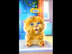 Funny Talking Ginger singing Happy Birthday to You! Happy Birthday Song Youtube, Birthday Wishes Songs, Birthday Songs Video, Funny Happy Birthday Song, Birthday Wishes For Kids, Happy Birthday Video, Cat Birthday, Funny Happy Birthdays, Talking Tom Cat