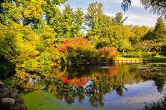 Fall 2014 Dow Gardens, Midland, Michigan