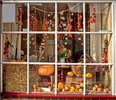 An Autumn harvest theme for a display in a shop window at Emsworth, Hampshire | by Anguskirk