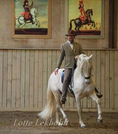"""Academic Art of Riding by Bent Branderup  Swan in """" bent-straight"""" on the circle."""