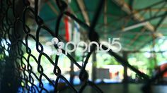 MMA Boxing Fighting Cage Fence Gym Combat Sport Close Up Hand Held - Stock Footage | by RyanJonesFilms