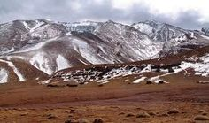 Este paisaje frío, ventoso y desarbolado de la tundra aparece también en las altas montañas de otras latitudes de la Tierra. Esta es la denominada Tundra Alpina , cuyas formaciones vegetales son parecidas (árboles enanos, matorrales achaparrados y de hoja pequeña, praderas) y además comparte muchas especies de plantas con la tundra ártica.