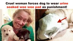 Punish heartless woman that mistreated dog for misbehaving and posted photos on Facebook!